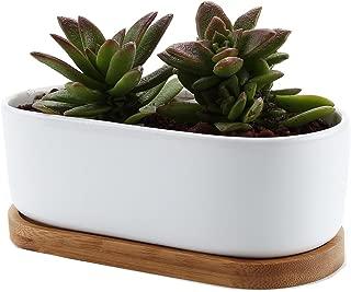 T4U Conjunto de 1 Diseño Moderno Oval Blanco de cerámica Cerámicos Planta Maceta Suculento Cactus Planta Maceta Planta Contenedor Vivero Maceta Macetas de jardín Macetas Envase
