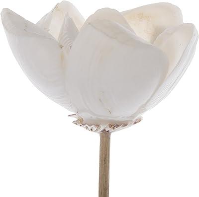 Amazon.com: Escultura de flor de Anemone de Lalique, oro ...