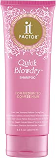 It Factor – Quick Blow Dry Shampoo – For Medium To Course Hair – Professional Grade Salon Quality Hair Care - Hairdresser Pros Love It – Original Formula