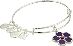 Charity By Design Forget Me Not Bangle