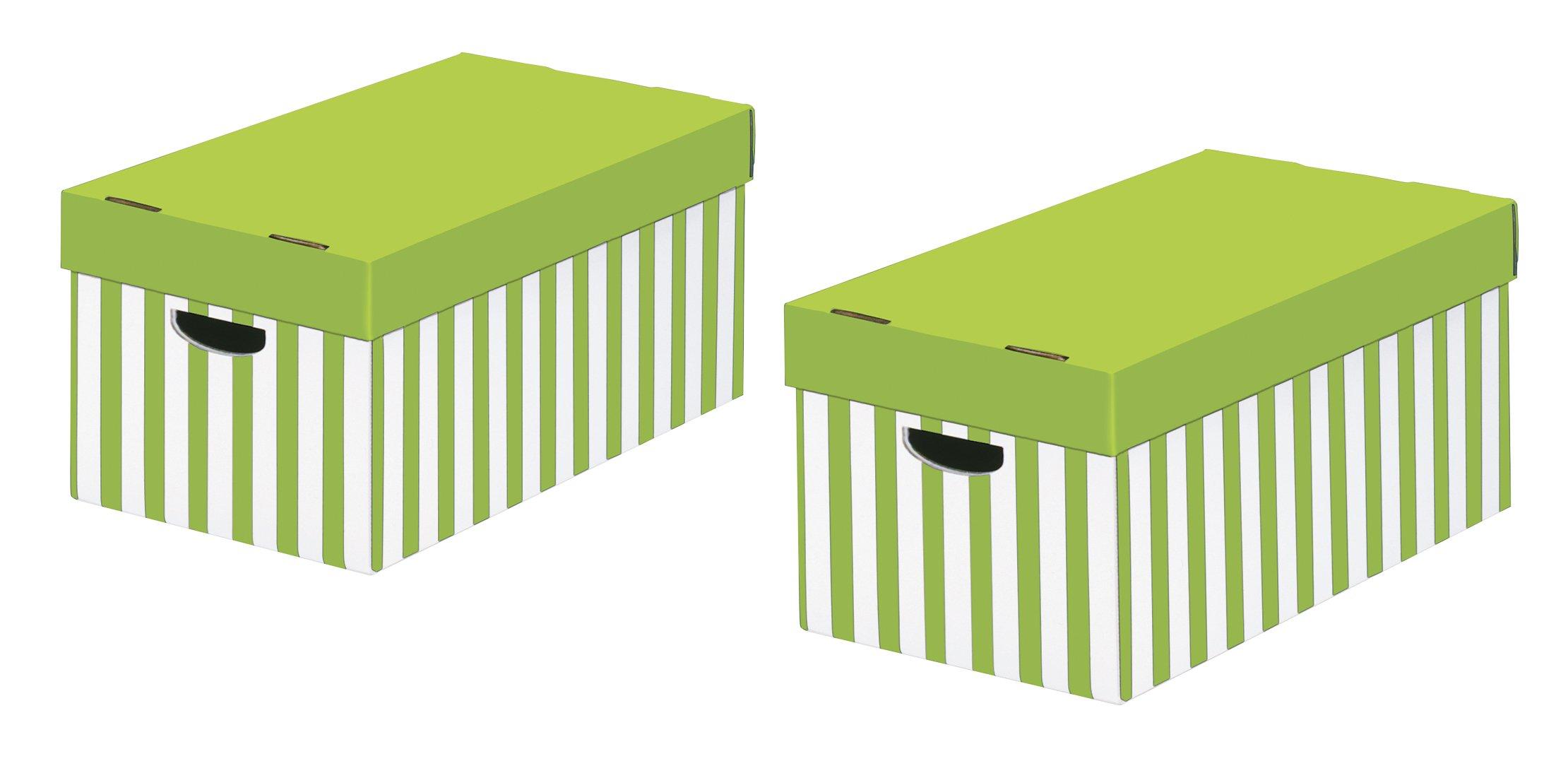Nips 119219128 - Pack de 2 cajas de almacenaje con tapa, 31 x 52 x ...