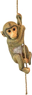 Design Toscano QM2673300 Chico The Chimpanzee Hanging Baby Monkey Statue
