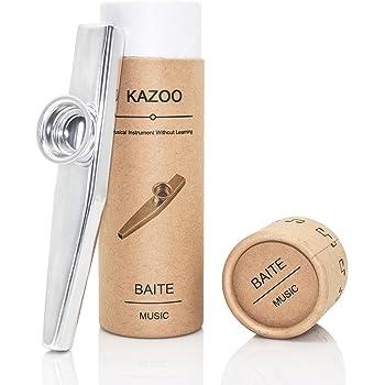 Mirlitón de metal, de OIBTECH, Kazoo Silver: Amazon.es ...