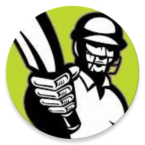 Street Cricket Umpire