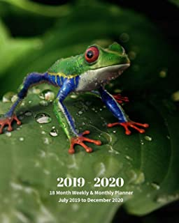 2019 - 2020   18 Month Weekly & Monthly Planner July 2019 to December 2020: Red-Eyed Tree Frog Mexico Tropical Frog Monthly Calendar with U.S./UK/ ... Holidays– Calendar in Review/Notes 8 x 10 in.