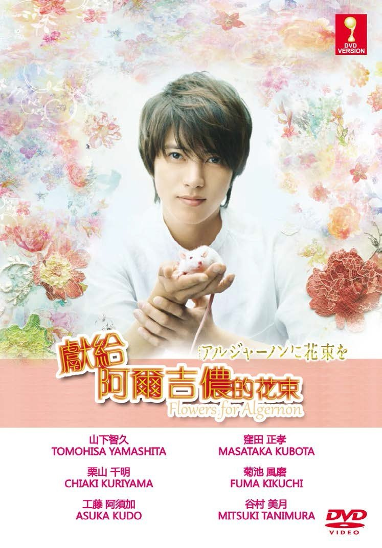 Sales Flowers for Algernon Max 87% OFF Japanese TV Drama with Sub English