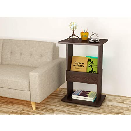 Anikaa Gaskins Engineered Wood Bed Side End Table/Books Storage Organizer/Cabinet Shelves with Display Magazine Rack/Stand for Living Room Bedroom (Wenge)
