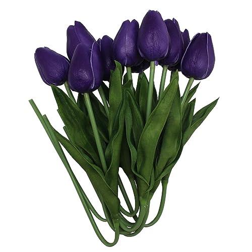 Dark Purple Flowers Amazon
