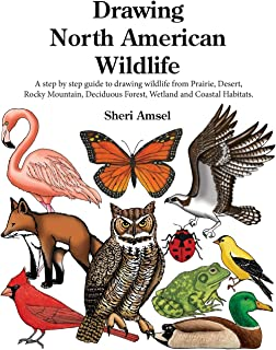 Drawing North American Wildlife: A step by step guide to drawing wildlife from Prairie, Desert, Rocky Mountain, Deciduous ...