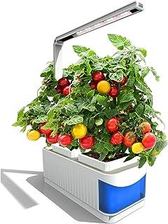 屋内水耕栽培ハーブ植物スマートガーデンキット、LEDグローライトデスクランプ、ミニハーブガーデン水耕栽培システム