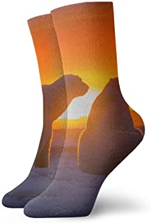 WEEDKEYCAT Polar Bear Snow Sunset Adult Short Socks Cotton Cool Socks for Mens Womens Yoga Hiking Cycling Running Soccer Sports