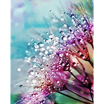 11.81x15.75 Inch,Aurora Starry Sky Ritoti DIY 5D Diamond Painting Kits for Adults Beginners Full Drill Crystal Rhinestone Pictures Arts Craft for Home Wall Decor