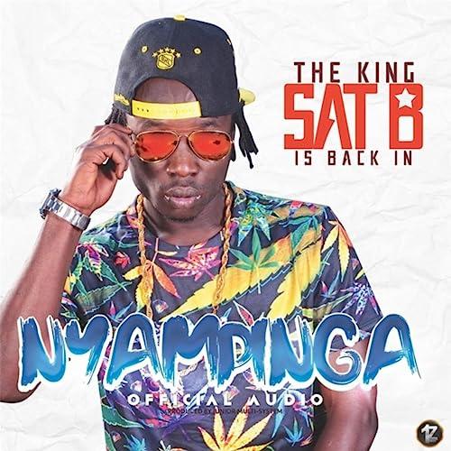 Nyampinga by Sat B on Amazon Music - Amazon.com