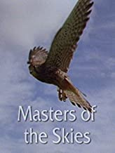 Masters of the Skies