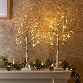 Vanthylit 2FT 24LT Pre-lit White Birch Tree Decorative Light Tabletop-2PC