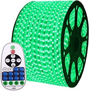 XUNATA 30ft Flexible LED Strip Lights, AC 110-120V 60 LEDs/M Dimmable Waterproof SMD 5050 LED Rope Light with Remote Controller for Party Home Decoration (Green)