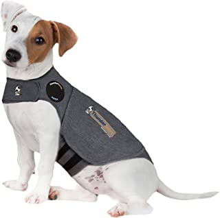 small dog anxiety vest