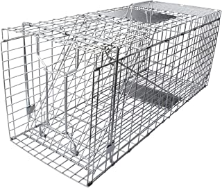 humane trap for cats