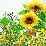 20 Servietten Gelbe Blumenwiese/Blumen/Sonnenblume/Garten 33x33cm