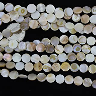 11mm Natural Flat Coin Sea Shell Beads Loose Gemstone Beads for Jewelry Making Strand 15 Inch (33-36pcs)