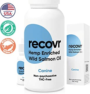 Hemp Oil Infused with Wild Alaskan Salmon Oil for Dogs by RECOVR 500mg