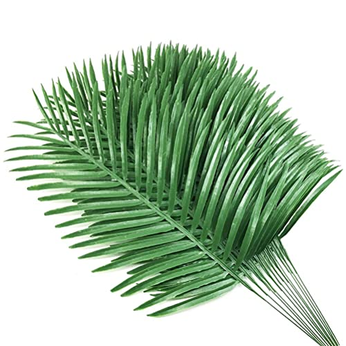 Palm Fronds: Amazon.com
