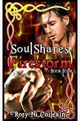 Firestorm: Book Four of the SoulShares Series Paperback