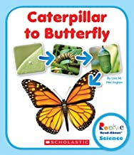 Caterpillar to Butterfly (Rookie Read-About Science: Life Cycles)