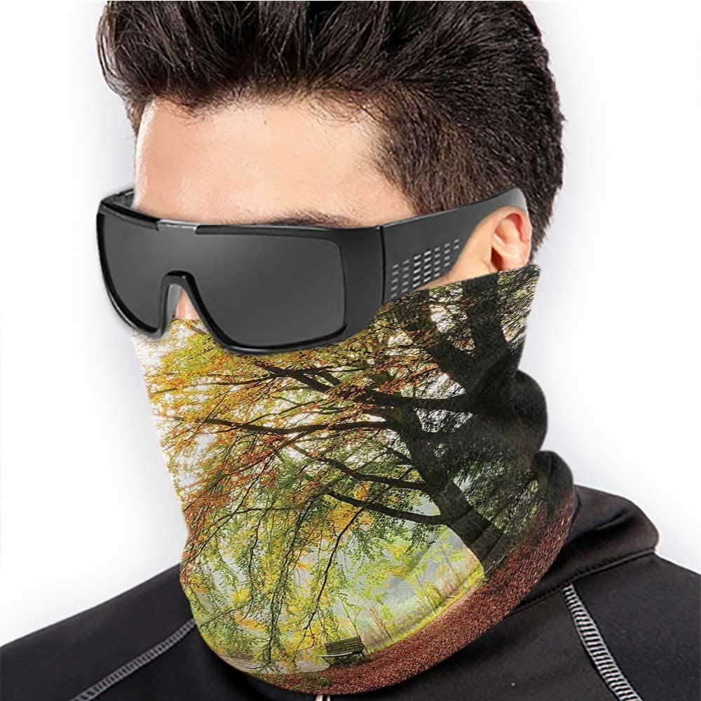 Neck Gaiters For Men Farm House Decor Winter Neck Gaiter Autumn View In A Forest With Faded Color Leaves European Northern Dutch Fall Image Orange Green