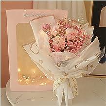 Exquisit Rose Gypsophila Gedroogd Bloem Boeket + LED Licht + Gift Bag Bloem Gift Box Valentijnsdag Verjaardag Gift Bruid B...