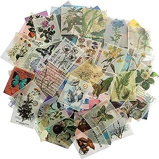 366 feuilles de scrapbooking vintage non répétitif pour album d'écriture bricolage artisanat quotidien recadrée rétro Scra...
