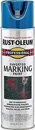 Best spray paint for grass