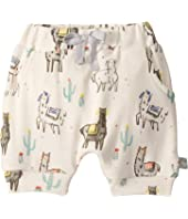 Pull Up Shorts (Infant)