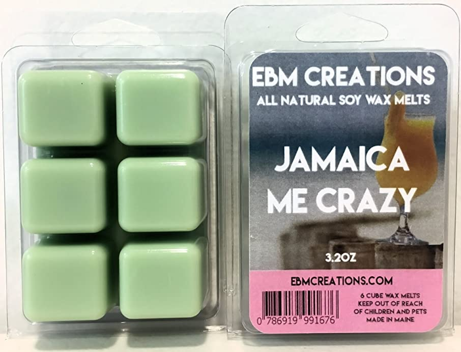 EBM Creations Scented All Natural Soy Wax Melts - 6 Pack Clamshell 3.2oz Highly Scented! (Jamaica Me Crazy)