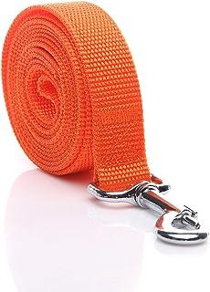 SALO Durable Nylon Dog Leash 10 Feet Long, Walking Training Dog Leashes for Medium Large Dogs, 1 Inch Wide (Orange)