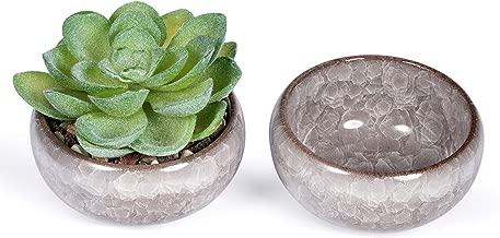 Best 2 pots for succulents Reviews