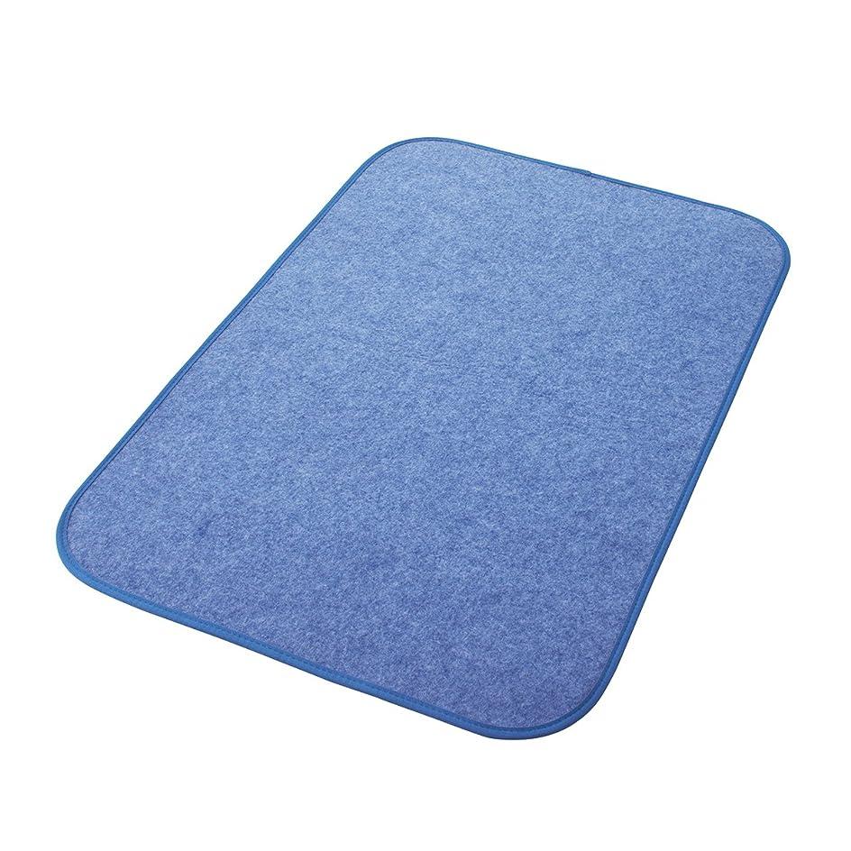 取り除く現代のうっかり西川リビング 調湿シート ブルー 60×90cm からっと寝 シリカゲル入り 1572-00007