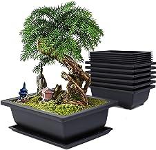 Amazon Com Bonsai Pots