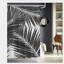 black palm designs