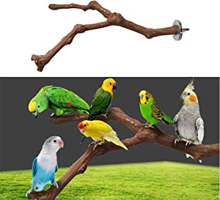ANTOLE Parrot Natural Standing Wood Stick Bird Cage Perch Cockatiel Parakeet Claw Grinding Toys Bird Cage Accessories Wild...