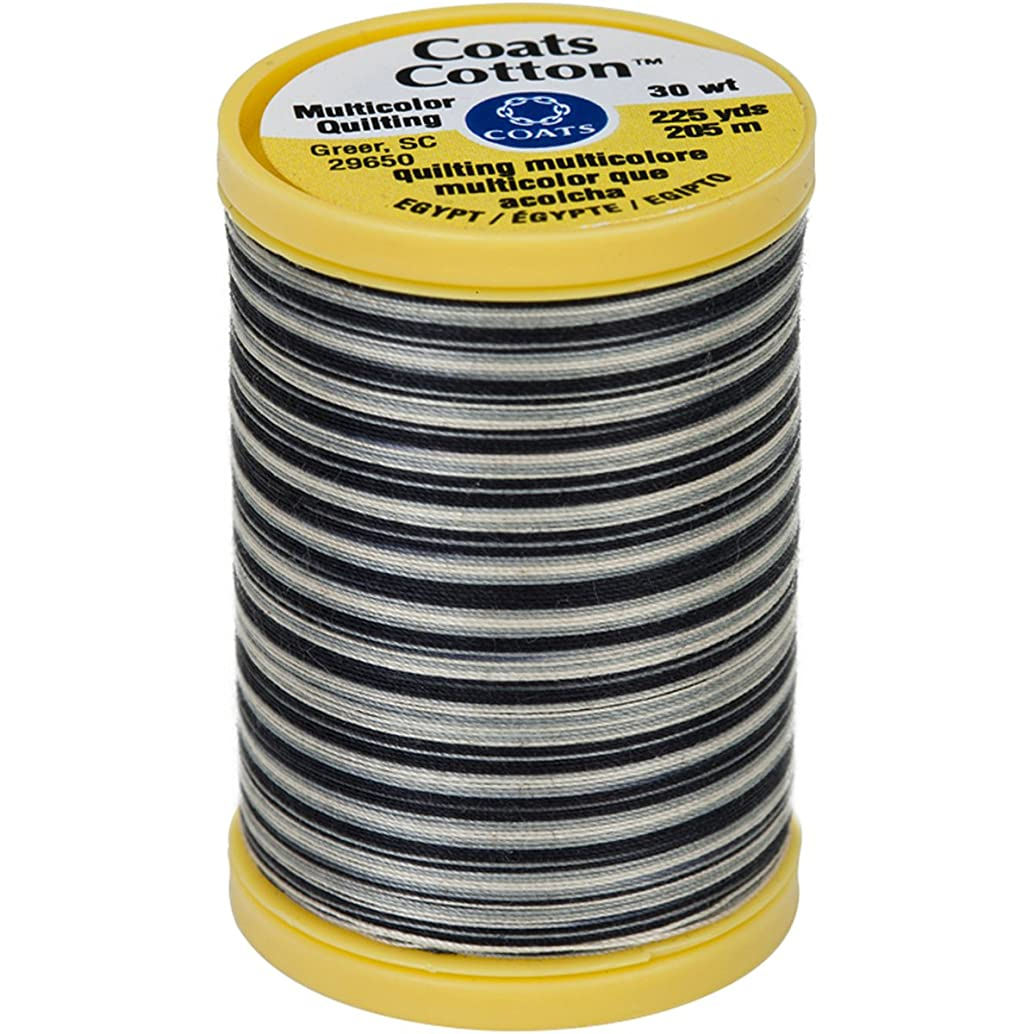 Coats S972-0820 Cotton Machine Zebra Quilting Thread, 225 yd, Multicolor