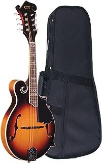 Best gold tone mandolin guitar Reviews