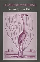 Flamingo Watching