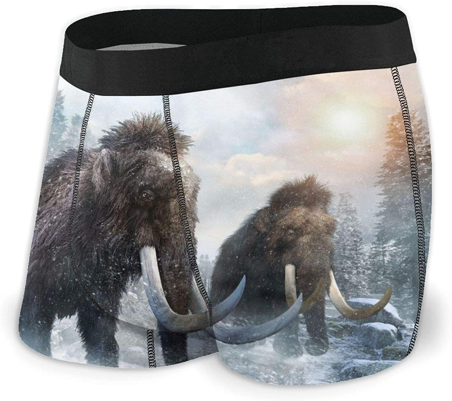 TZT Mammoth Scene Cheap super special price Men's Boxer Ranking TOP7 Briefs Comfortable Breathable Unde