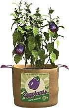 Panacea 15 Gallon Eggplants Grow Bag