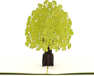 Liif Ginkgo Biloba Pop Up Greeting Card, 3D Tree Greeting Pop Up Card for All Occasions, Birthday, Mother's Day, Anniversary, Graduation, Get Well, Sympathy (Green)