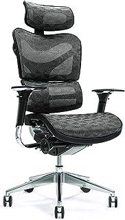Lüllmann Ergo 700 - Silla de oficina ergonómica, color negro