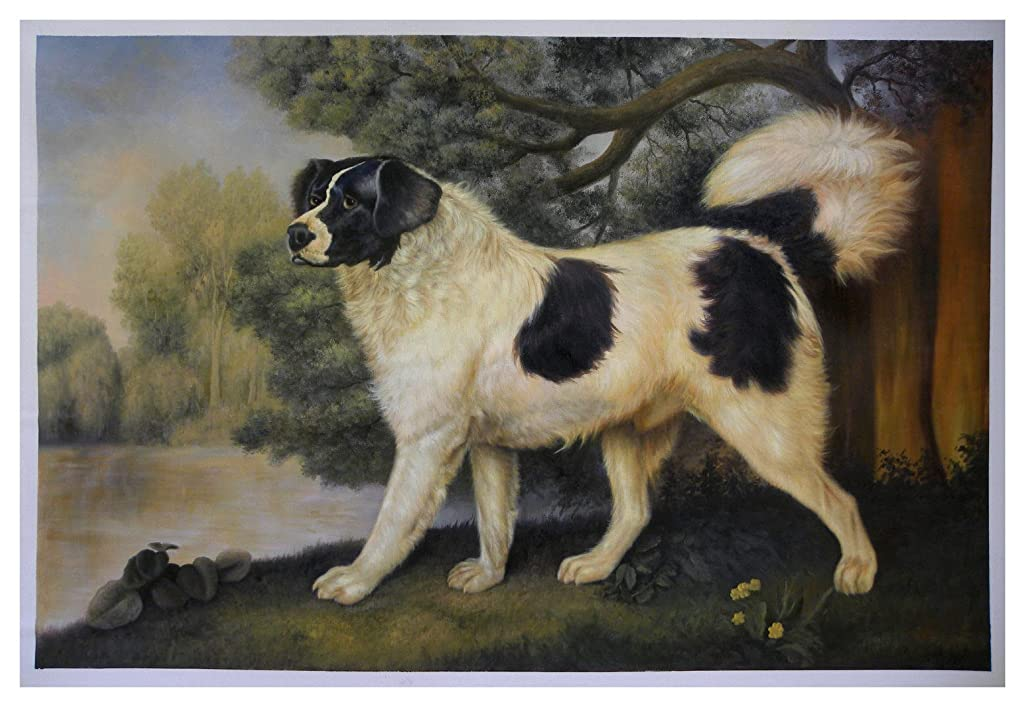 Portrait of a Newfoundland Dog, the Duke of York - George Stubbs high quality hand-painted oil painting reproduction,big white dog in landscape artwork