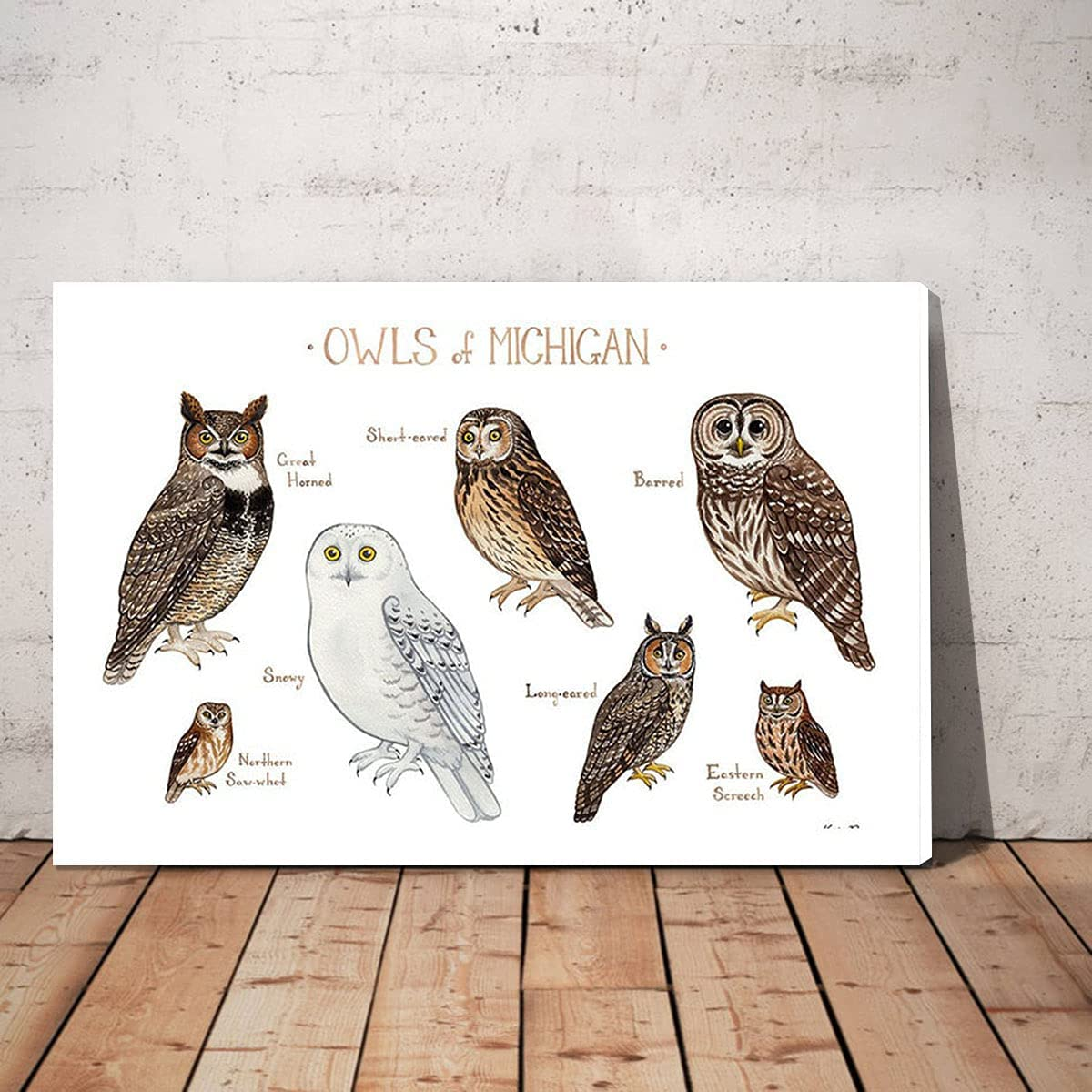 LuiV HAM Types of OwlsKnowledge OwlsKn San Jose Mall Art Wall Canvas OFFicial store