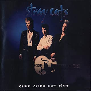 Best stray cats please don t touch Reviews